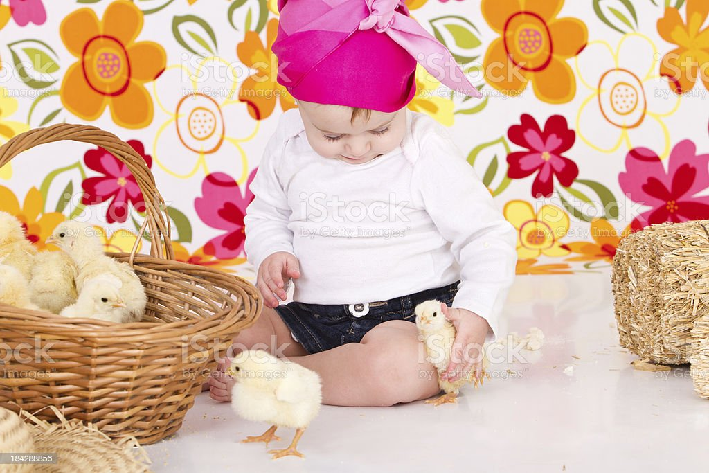 Cute little farmer holding a chick royalty-free stock photo