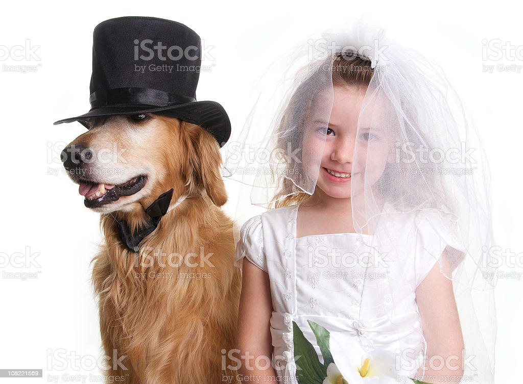 Cute Little Girl Dressed as a Bride Marrying her  Dog royalty-free stock photo