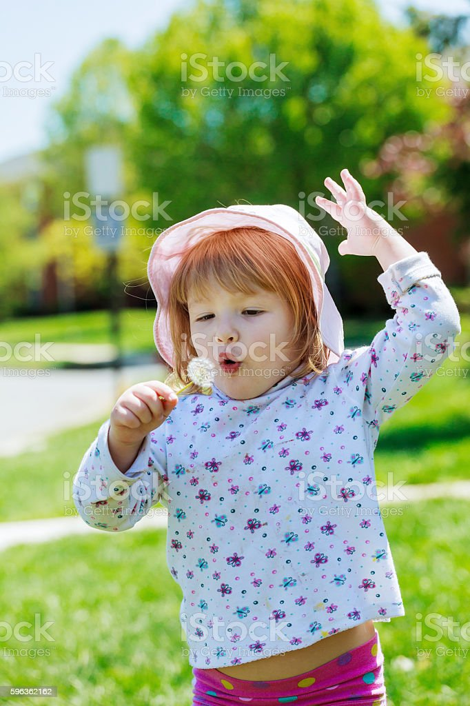 Cute little girl gets dandelion and smiling, royalty-free stock photo