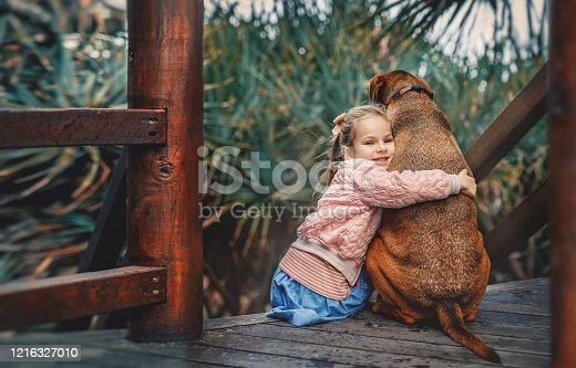 Cute little girl hugs a big red dog sitting together on the wooden stairs. Child and pet.
