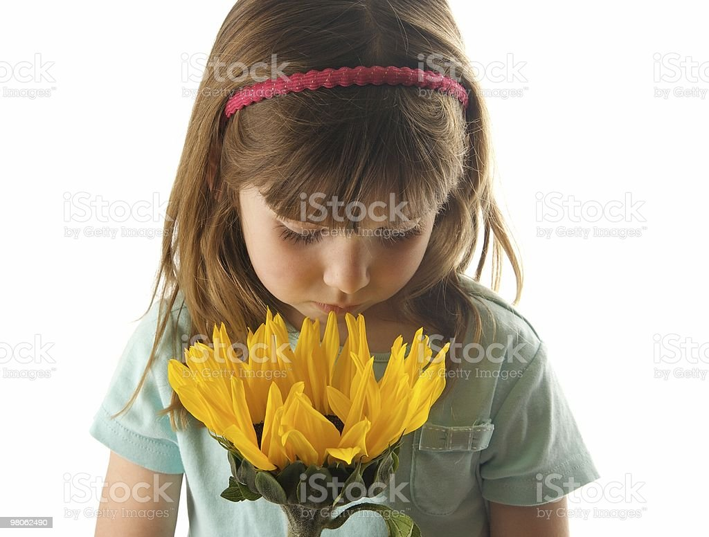 Cute Little Girl Looking at Sunflower royalty-free stock photo