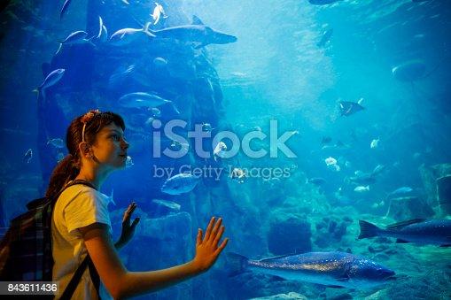 Cute little girl looking at undersea life in a big aquarium