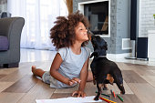 Funny little African American girl lying on floor coloring picture having fun with dog, family pet kissing playing with small child painting at home, kid laugh entertaining with domestic animal