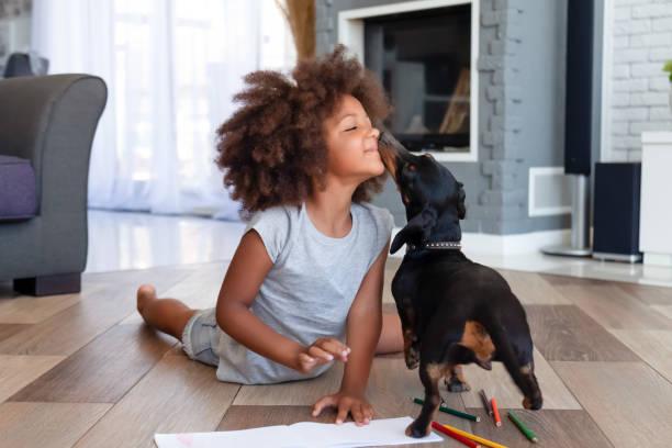Cute little girl lying on floor playing with dog picture id1151287168?b=1&k=6&m=1151287168&s=612x612&w=0&h=vpd mqulbixw9ckpnogl9kesbeq9qwey4rq3svvcjyo=