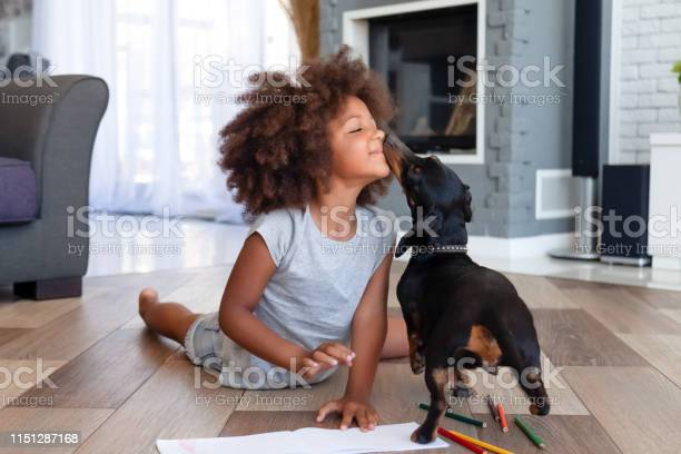 Cute Little Girl Lying On Floor Playing With Dog Stock Photo - Download Image Now