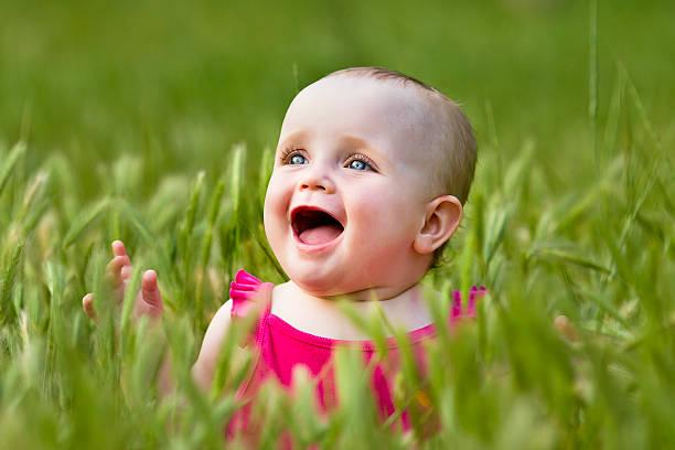 Niedliche kleine Mädchen auf der Wiese – Foto