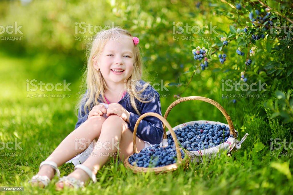 Cute little girl picking fresh berries on organic blueberry farm on warm summer day stock photo