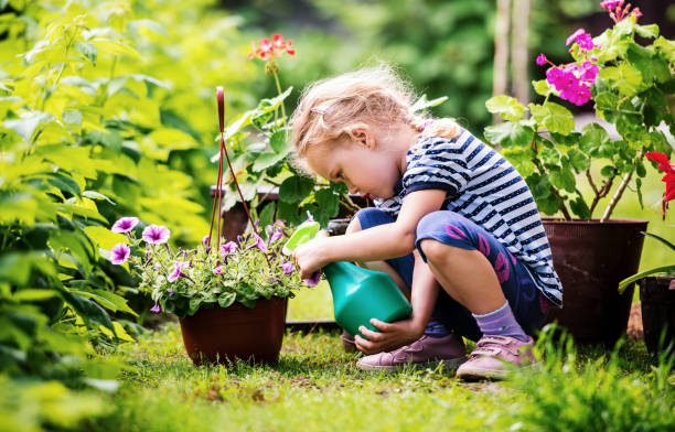 Cute little girl watering plants in the garden stock photo