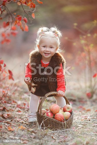 istock Cute little girl with a basket of red apples in the fall in the park 1064200128