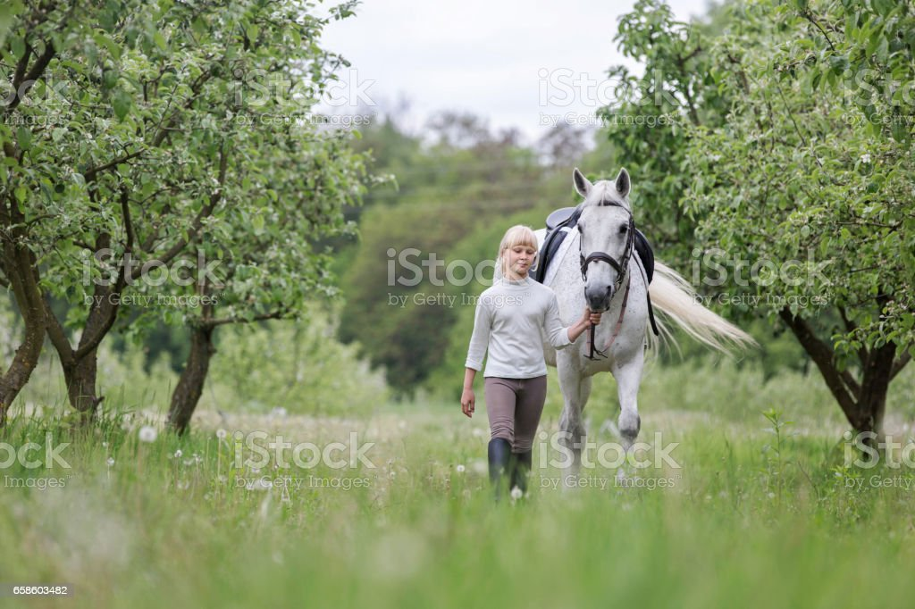 Cute little girl with a horse. stock photo