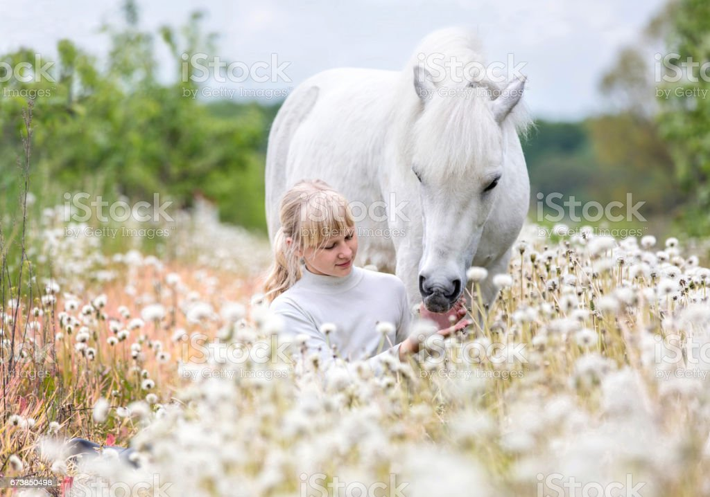 Cute little girl with a Shetland pony – Foto