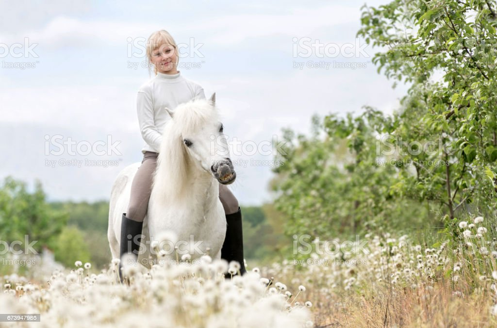 Cute little girl with a Shetland pony stock photo
