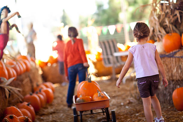 Cute Little Girls Pulling Their Pumpkins In A Wagon Cute Little Girls Pulling Their Pumpkins In A Wagon At A Pumpkin Patch One Fall Day. recreational pursuit stock pictures, royalty-free photos & images