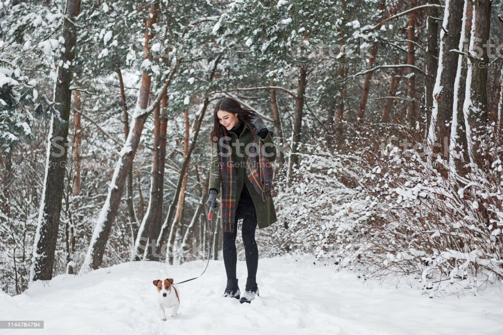 Cute little pet outdoors. Woman in warm clothes walks the dog in the...