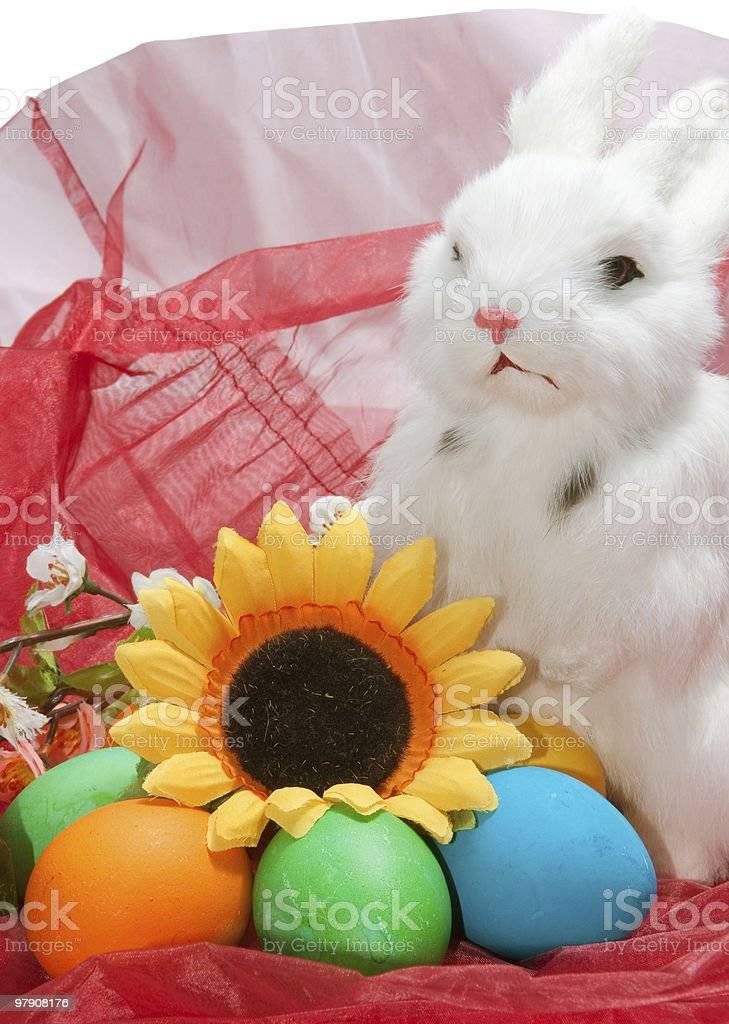 Cute little rabbit in basket with flowers royalty-free stock photo