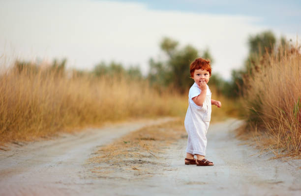cute little redhead baby boy walking on rural path at summer day stock photo