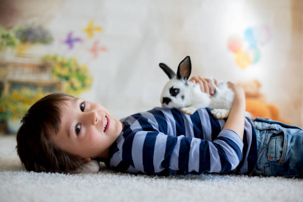 Cute little toddler boy dressed smart casual playing with little and picture id1141528613?b=1&k=6&m=1141528613&s=612x612&w=0&h=f5fgvfozlkuc7nmfbm qnodtzwp4nq0ht0bvaa1dezw=