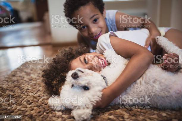 Cute mixed race siblings playing at home with dog picture id1171136302?b=1&k=6&m=1171136302&s=612x612&h=h75llcddopge 6ffbj9q00 26pgbgocmyqyh6kejkv0=