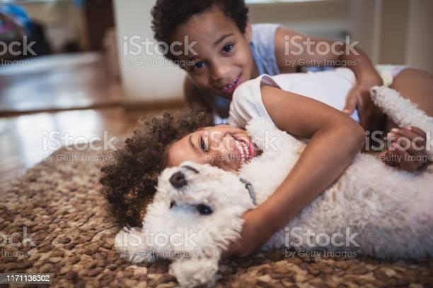 Cute mixed race siblings playing at home with dog picture id1171136302?b=1&k=6&m=1171136302&s=612x612&h=h75llcddopge 6ffbj9q00 26pgbgocmyqyh6kejkv0=
