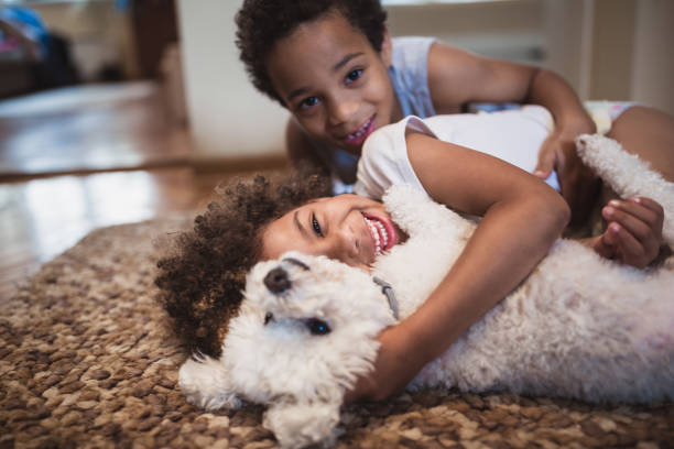 Cute mixed - race siblings playing at home with dog stock photo