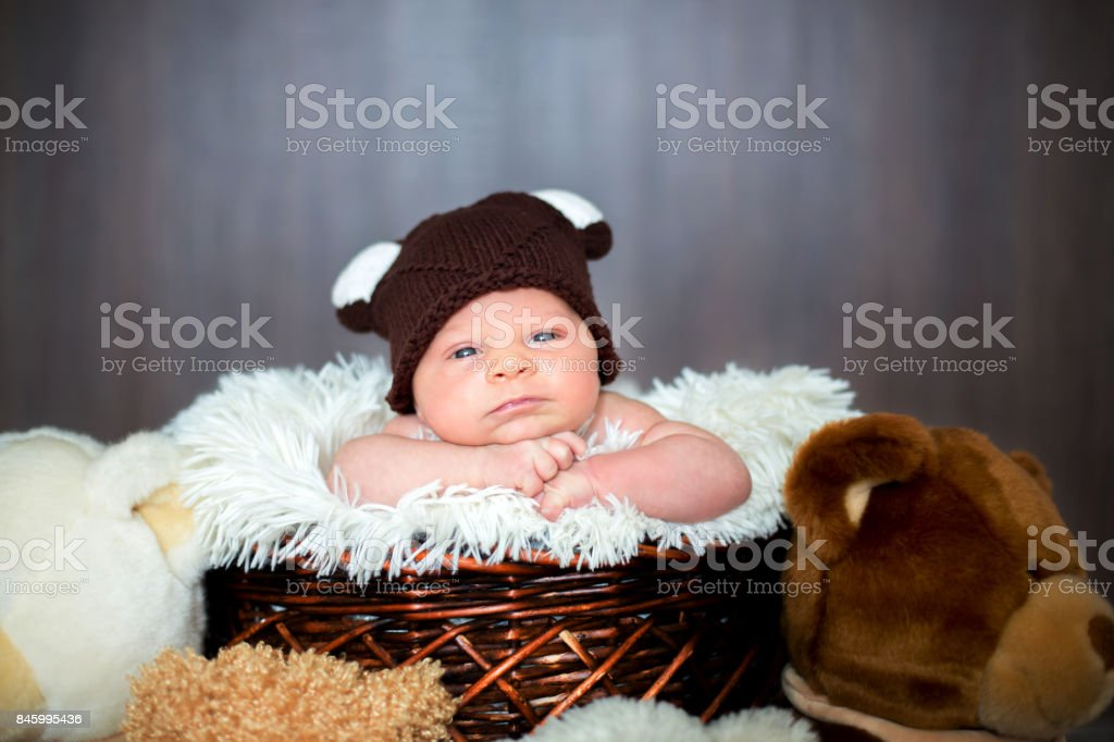 ... store cute newborn baby boy in basket with teddy bear hat looking at  camera royalty d0874 6e8b723e3ea4