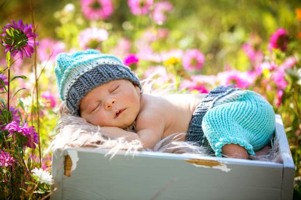 Lindo bebé de recién nacido durmiendo pacíficamente en la canasta en el jardín - foto de stock