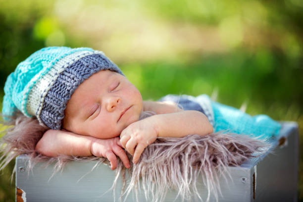 Cute newborn baby boy, sleeping peacefully in basket in garden stock photo