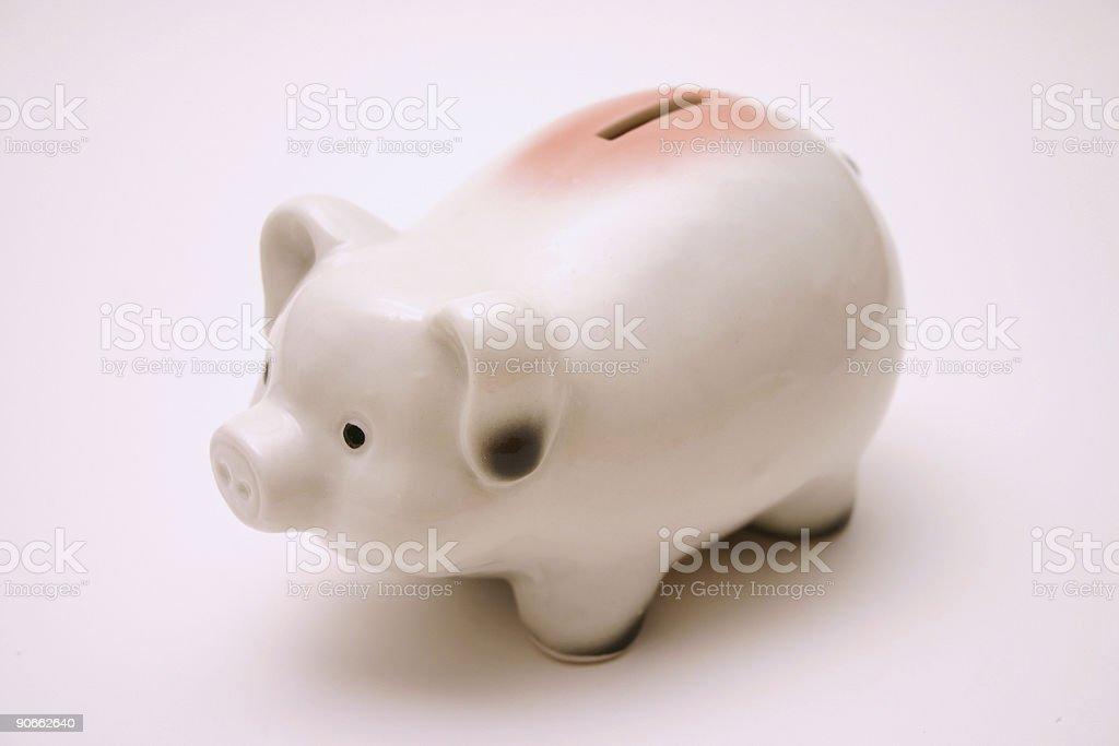 Cute Piggy royalty-free stock photo