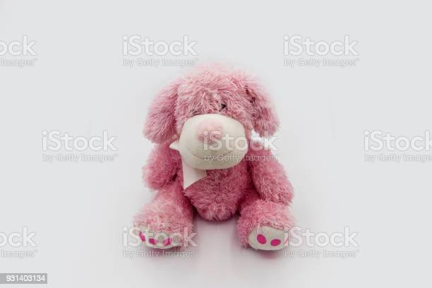 Cute pink puppy toy shot on white soft plush toy dog looking cute picture id931403134?b=1&k=6&m=931403134&s=612x612&h=jfarrycngwk58o5 oatry mear8xegvm0dcwze26 qe=