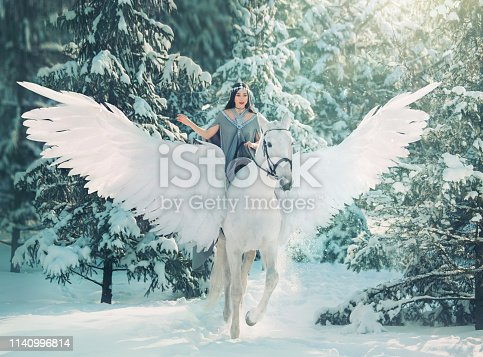cute princess of winter snow forest riding on big white fairy pegasus,  goddess of cold on magical animal, pleasant weather, friendship human and animal, lady in bright sunlight and flying snow.