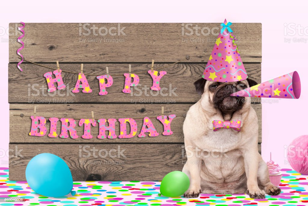 Cute Pug Puppy Dog With Pink Party Hat And Horn Wooden Sign Text Happy