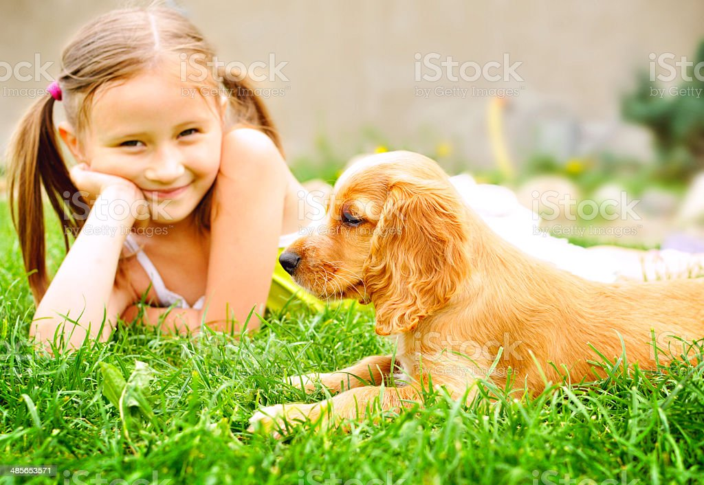 Cute puppy and children stock photo