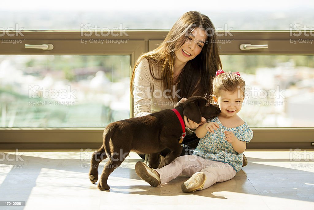 Cute puppy kissing a little girl royalty-free stock photo