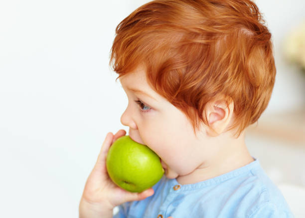 cute redhead toddler baby biting tasty green apple stock photo