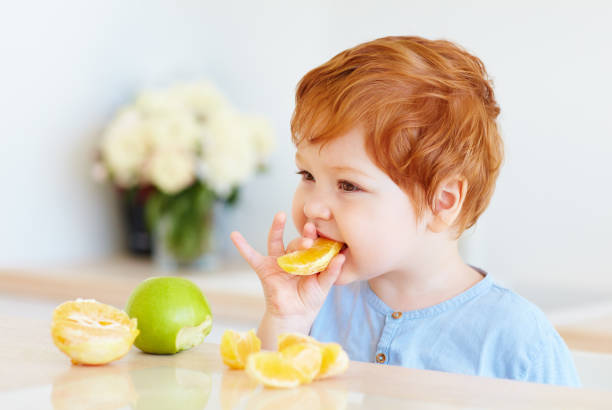 cute redhead toddler baby tasting orange slices and apples at the kitchen stock photo