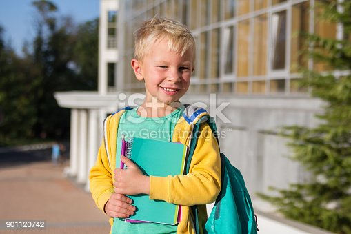 834369132 istock photo Cute schoolboy with books and a backpack 901120742