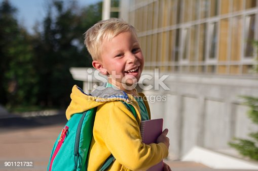 834369132 istock photo Cute schoolboy with books and a backpack 901121732