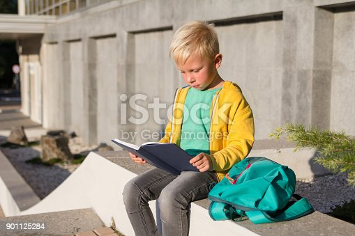 834369132 istock photo Cute schoolboy with books and a backpack 901125284