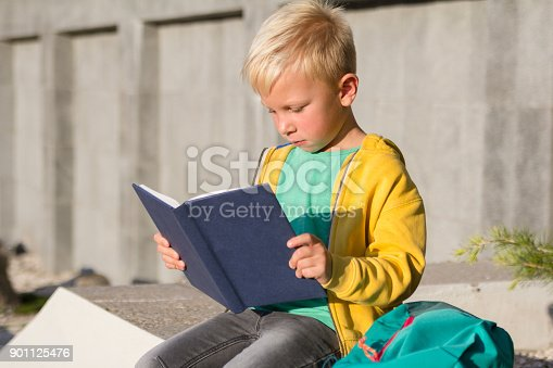 834369132 istock photo Cute schoolboy with books and a backpack 901125476