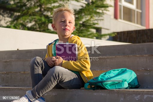 834369132 istock photo Cute schoolboy with books and a backpack 901126392