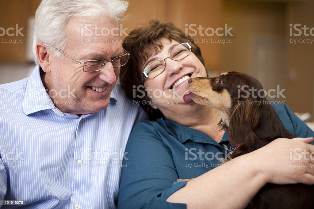 Cute Senior Couple Smiling with Puppy stock photo