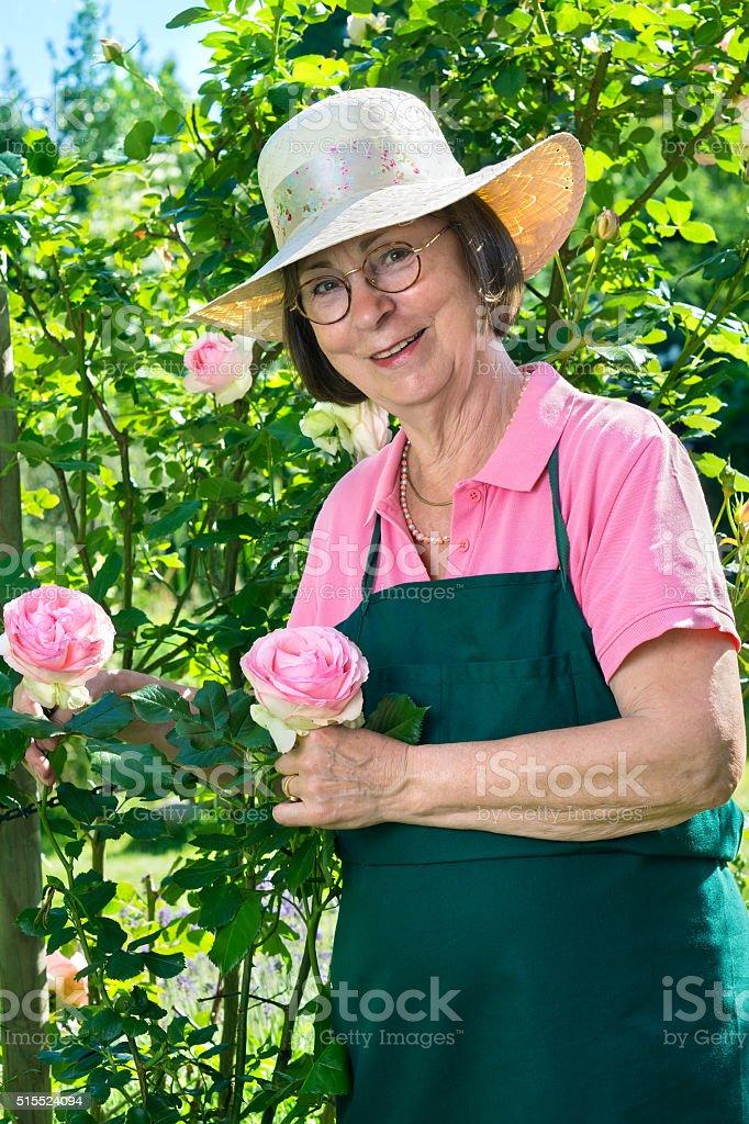 Cute Senior Gardener With Eyeglasses And Hat stock photo 515524094 ...
