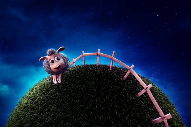 Cute sheep on grass next to a fence at night stock photo