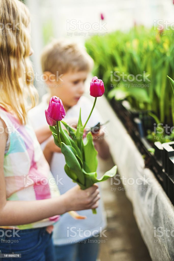 Cute siblings in a flower shop royalty-free stock photo