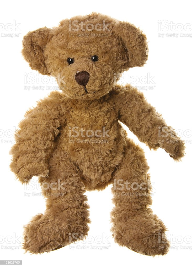 Cute Teddy Bear Standing stock photo
