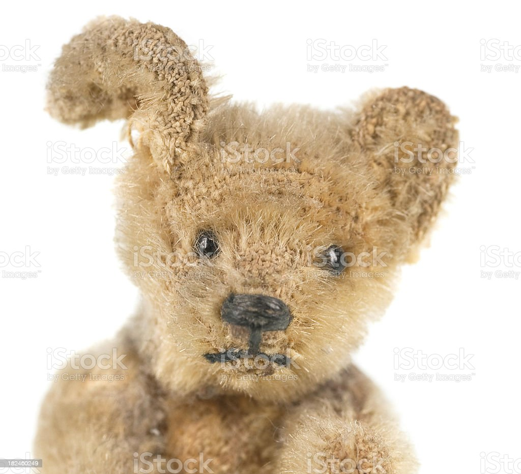cute teddy on white background royalty-free stock photo