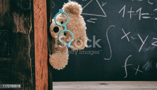 909927050 istock photo Cute teddy wearing glasses and black chalkboard with mathematics 1172750319