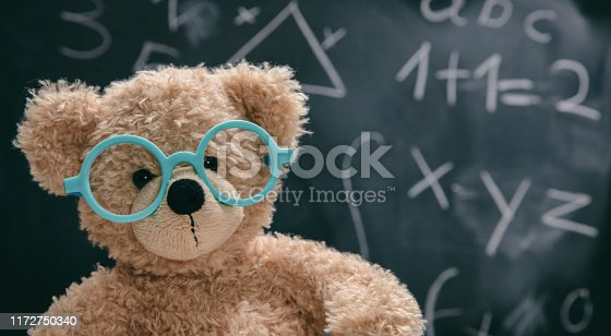 909927050 istock photo Cute teddy wearing glasses and black chalkboard with mathematics 1172750340