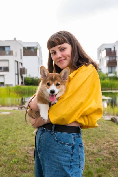 cute teenage girl hugs a corgi puppy, urban background stock photo
