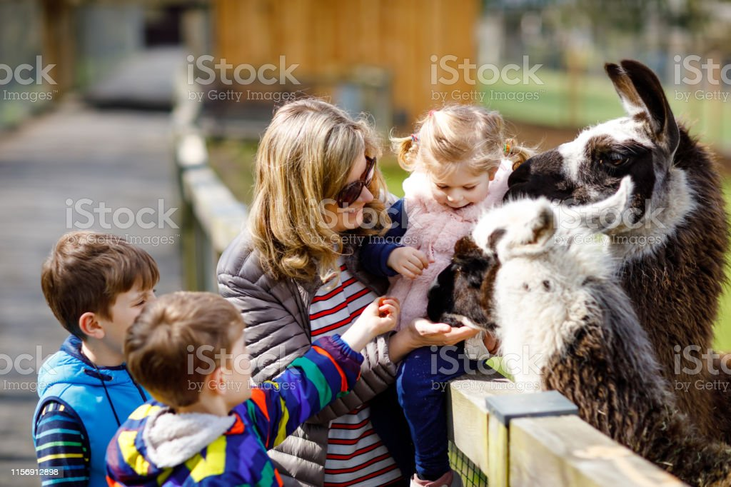 Cute toddler girl, two little school kids boys and young mother...